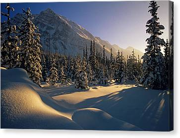 Sun Setting Behind Trees And Mountain Canvas Print by Mike Grandmailson