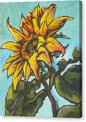 Sunflower 1 Canvas Print by Sandy Tracey