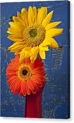 Sunflower And Mum Canvas Print by Garry Gay