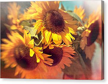 Sunflowers Canvas Print by Boston Thek Imagery