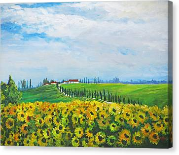 Sunflowers In Chianti Canvas Print by Heidi Patricio-Nadon