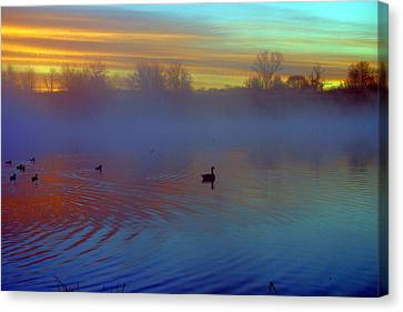 Sunrise On Duck Pond Canvas Print by Laurie Prentice