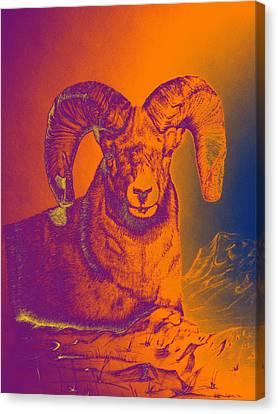 Sunrise Ram Canvas Print by Mayhem Mediums