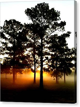 Sunrise3 Canvas Print by Amber Stubbs