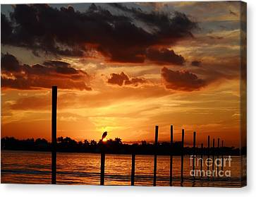 Sunset 1-1-12 Canvas Print by Lynda Dawson-Youngclaus