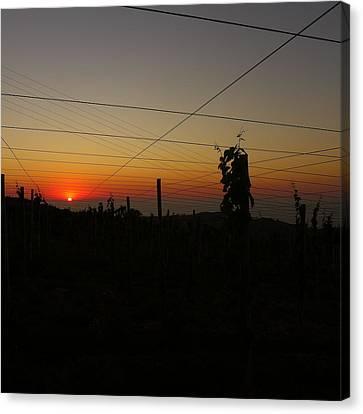 Sunset 3 Canvas Print by Jl Zufiria