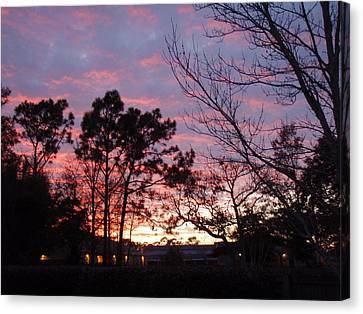 Sunset 7 Canvas Print by Michael Milanak
