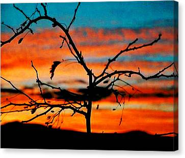 Sunset In Nevada Canvas Print by Stephani JeauxDeVine