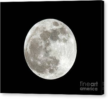 Super Moon 5 5 2012 Canvas Print by Andee Design