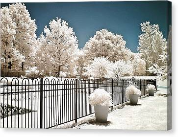 Surreal Dreamy Color Infrared Nature And Fence  Canvas Print by Kathy Fornal