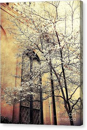 Surreal Gothic Church Window With Fall Tree Canvas Print by Kathy Fornal