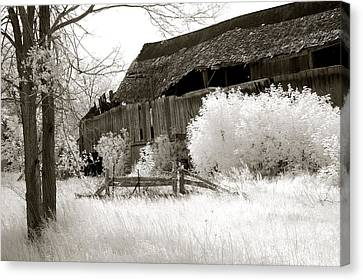 Surreal Infrared Sepia Michigan Barn Nature Scene Canvas Print by Kathy Fornal