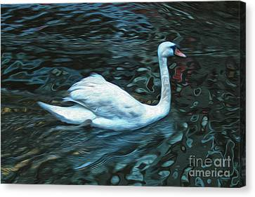 Swan Canvas Print by Gregory Dyer