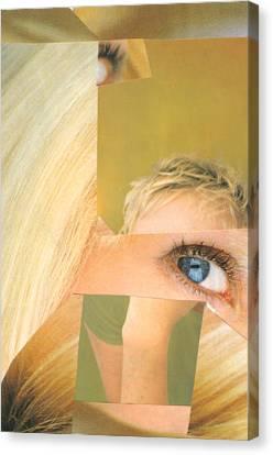 Swedish Thing Canvas Print by Michal Rezanka