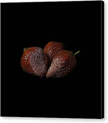 Sweet And Tasty Canvas Print by Nigel Jones