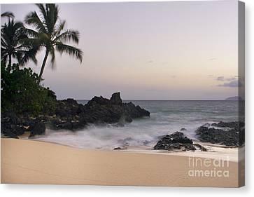 Sweet Dreams - Paako Beach Maui Hawaii Canvas Print by Sharon Mau