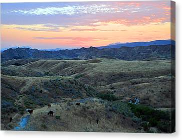 Sweet So Cal Sunset Canvas Print by Lynn Bauer