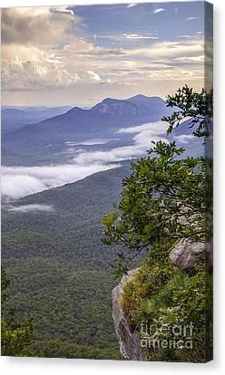 Table Rock And Yellow Flowers Canvas Print by David Waldrop
