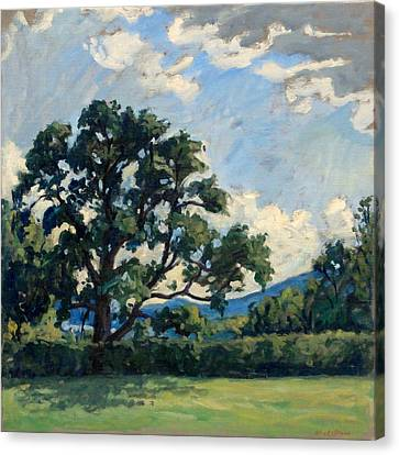 Tanglewood Afternoon Canvas Print by Thor Wickstrom