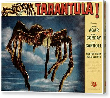 Tarantula, 1955 Canvas Print by Everett