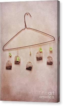 Tea Bags Canvas Print by Priska Wettstein