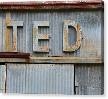 Ted Rusty Name Sign Art Canvas Print by Nikki Marie Smith