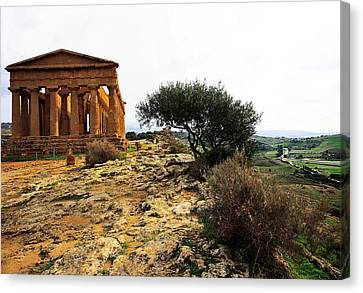 Temple Of Concordia 2 Canvas Print by Steve Bisgrove