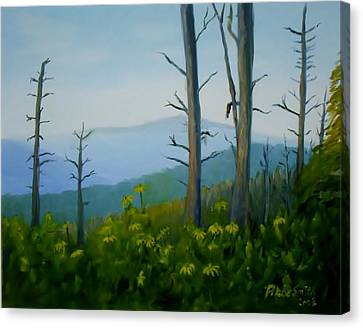 Tennessee Mts. Canvas Print by Phebe Smith