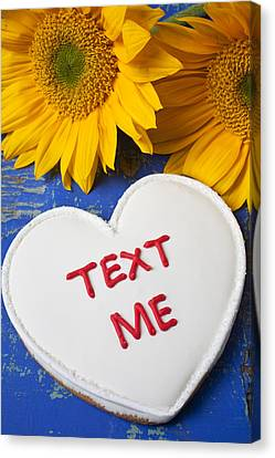 Text Me Canvas Print by Garry Gay