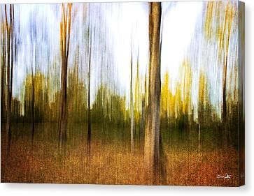 The Backyard Canvas Print by Scott Pellegrin