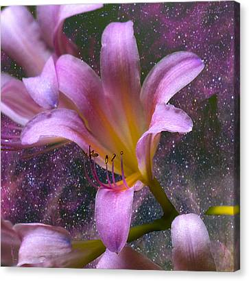 The Beauty Of Pollination Canvas Print by J Larry Walker