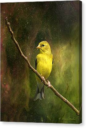 The Beauty Of Youth Canvas Print by J Larry Walker