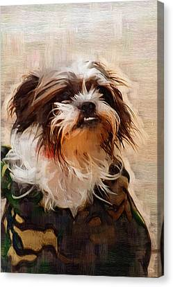The Camo Makes The Dog Canvas Print by Kathy Clark