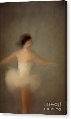 The Dance Canvas Print by Margie Hurwich