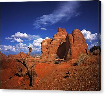 The Devils Garden In Arches National Park Canvas Print by Daniel Chui