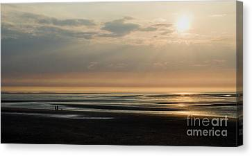 The Dog Walkers Canvas Print by Wayne Molyneux