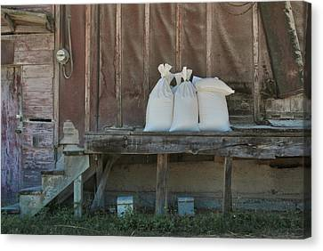 The Feed Mill Canvas Print by Odd Jeppesen