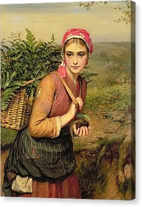 The Fern Gatherer Canvas Print by Charles Sillem Lidderdale