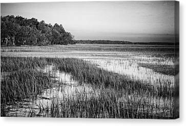 The Flats Canvas Print by Phill Doherty