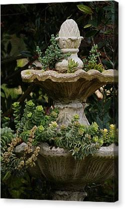 The Fountain Painterly Canvas Print by Ernie Echols