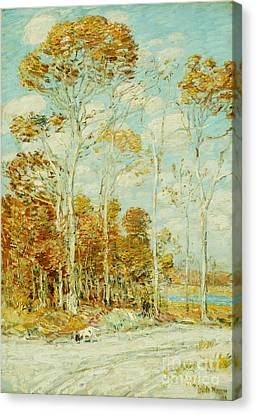 The Hawk's Nest Canvas Print by Childe Hassam
