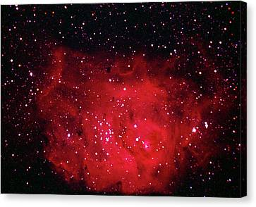 The Lagoon Nebula In Sagittarius Canvas Print by A. V. Ley