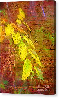 The Leaves Of Yesteryear Canvas Print by Judi Bagwell