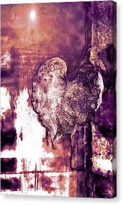 The Light Within Canvas Print by Linda Sannuti
