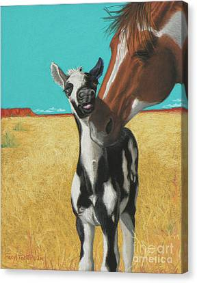 The Little Mustang Canvas Print by Tracy L Teeter