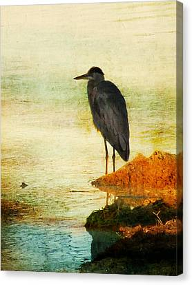 The Lonely Hunter Canvas Print by Amy Tyler