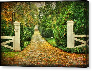 The Long Lonely Path Canvas Print by Darren Fisher