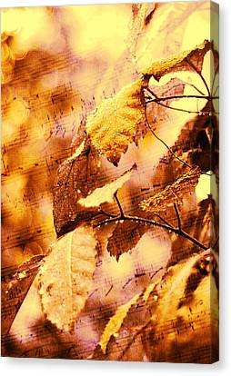 The Melody Of The Golden Rain Canvas Print by Jenny Rainbow