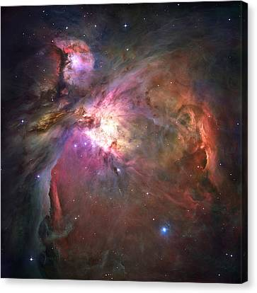 The Orion Nebula Was Born In Enormous Canvas Print by Nasa