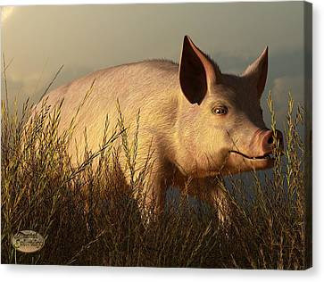The Pink Pig Canvas Print by Daniel Eskridge